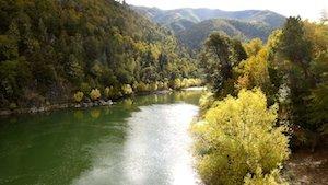 Fluss in Araucania
