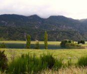 kleine Lagune nahe Coyhaique