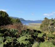 Nationalpark Chiloé - Nalca