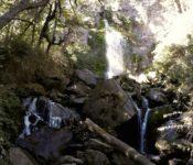 Wasserfall Los Alerces