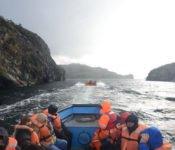 Angostura Fjord
