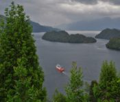 Quitralco Fjord