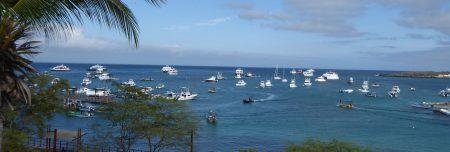 Galapagos Kreuzfahrt Bewertungen