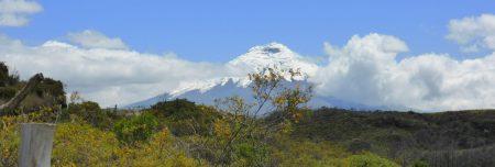 Ecuador-Reise-Organisation