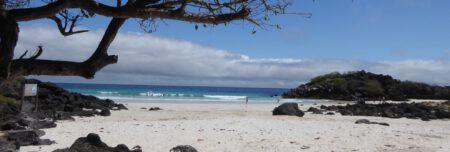 Galapagos bis Mai durchgeimpft